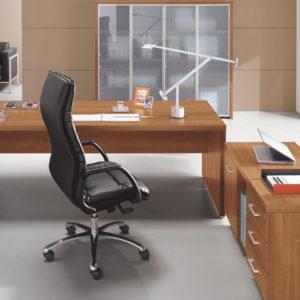 Modello Ufficio Direzionale